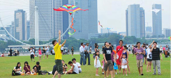 Kite flying at Green Roof